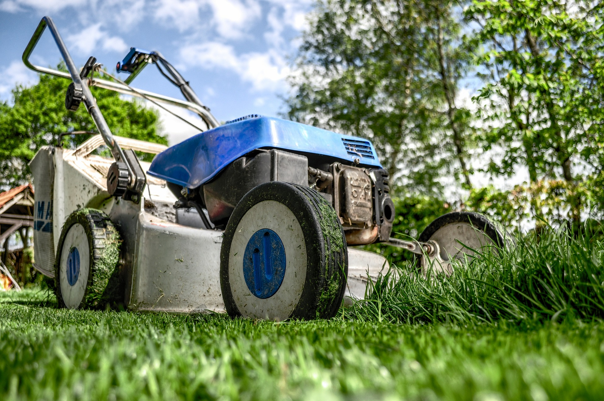 Siedem sprzętów, w które powinien zaopatrzyć się każdy posiadacz ogrodu